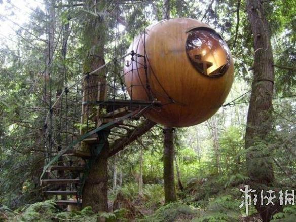 9,加拿大温哥华岛——球床树屋:手工制作的木制球床在