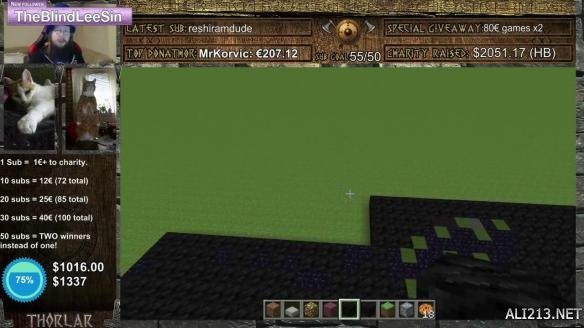 《我的世界(minecraft)》打造暴雪经典像素图 百万方块破世界记录
