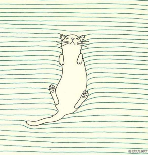 手绘线条猫壁纸