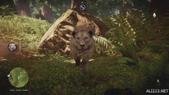 国外玩家带来《孤岛惊魂:原始杀戮》驯服野兽心得
