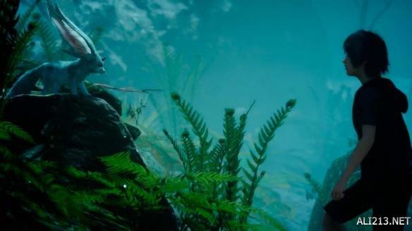 壁纸 海底 海底世界 海洋馆 水族馆 584_328