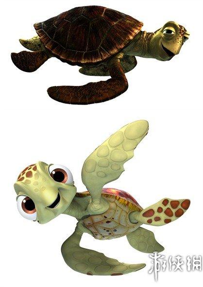 与乌龟的不同之处在于,海龟的头,颈和四肢都不能缩入到甲壳.
