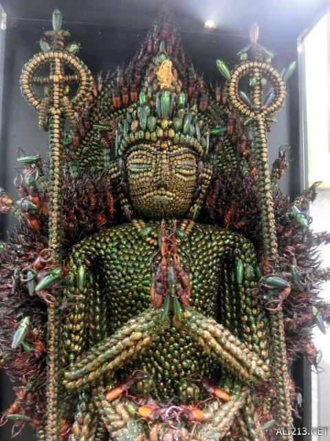 日本男子用2万只昆虫做成千手观音像 盛宴还是重口味