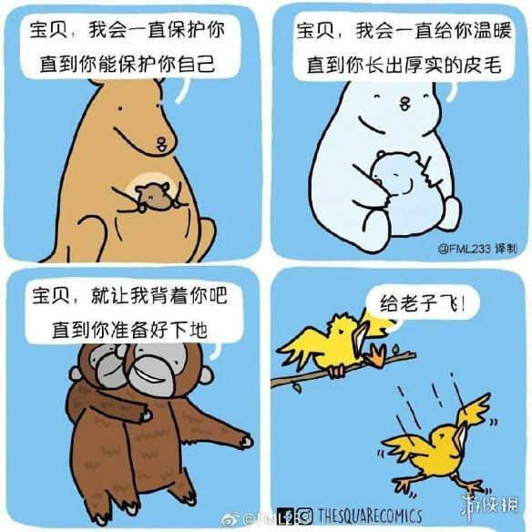 哺乳动物和卵生动物的区别