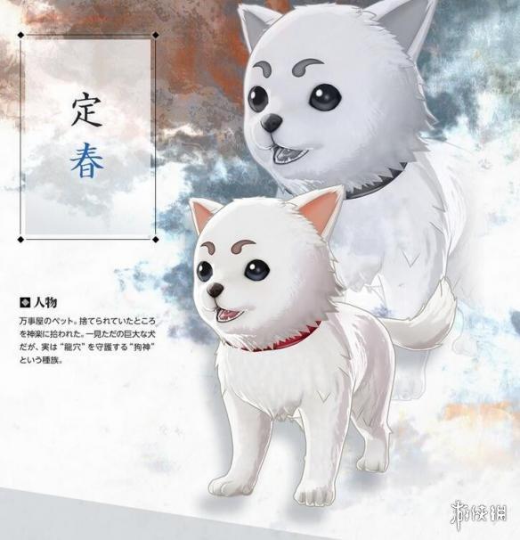 ps宠物海报素材