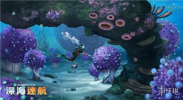 打造属于你的无畏级深海战舰   游戏主打优秀的游戏画面和逼真的海底体验,利用精细的画面表现和适当的气氛渲染让玩家如同置身真正的外星海底。同时,最新的画质补丁将游戏的光影和细节效果提升到了前所未有的高度,多光源渲染和大量高清重置的贴图将为玩家展现一个如梦似幻的异星海底世界。