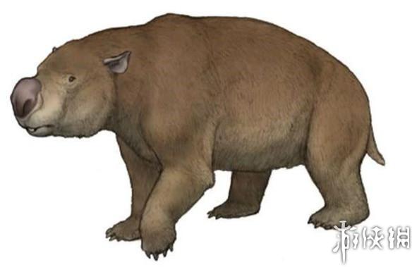 10、双门齿兽   双门齿兽生活在一万二千年前的澳大利亚,体形大如河马或犀牛,十分肥重,是已知最大的有袋类动物。其中丽纹双门齿兽是体型最大的,也是最早被发现的。   双门齿兽栖息在森林、林地及草原,可能接近水源或河流,并吃树叶、灌木及草。最大的有河马般大小,约有3米长,肩高2米,幼小或衰老的双门齿兽可能受到袋狼,袋狮,古巨蜥等动物的侵袭,壮年双门齿兽则少有天敌,当然人类可能除外。它现存的近亲是袋熊及树袋熊