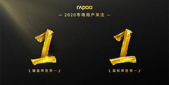 完美收官,2020雷柏市场排名,键鼠品牌双料第1