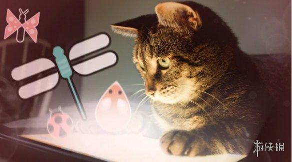 外媒:游戏开发者与猫咪互动会使工作有更好的表现