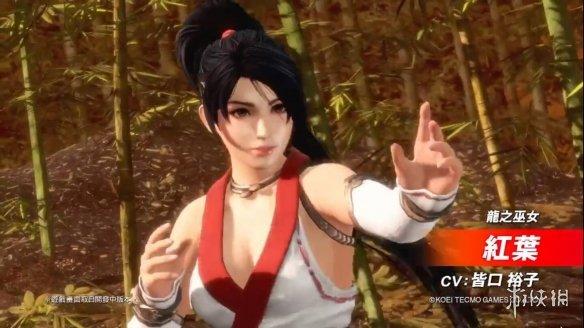 《死或生6》将加入《忍龙》红叶!各角色全新忍者服魅力上线!_钻皇帝国