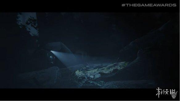 TGA2019:恐怖游戏新作《森林之子》预告片公开