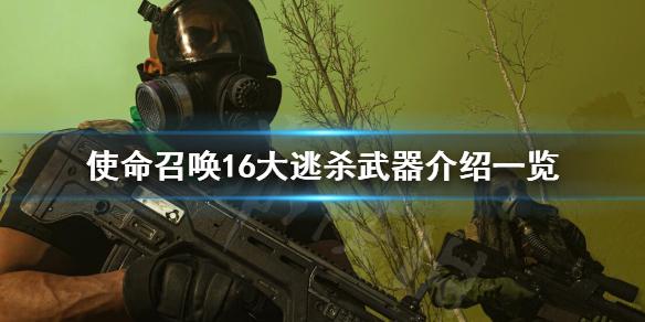 《使命召唤16大逃杀》模式武器有哪些 大逃杀武器介绍一览