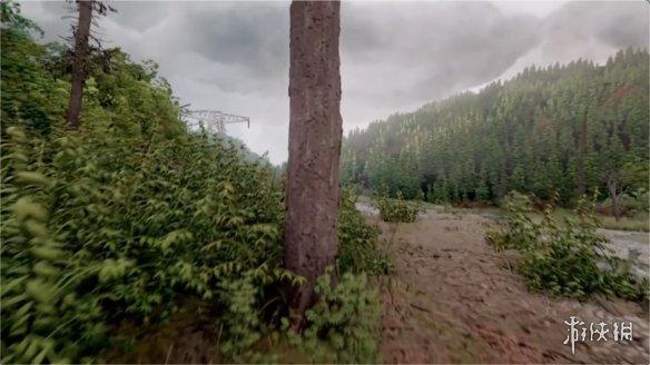 大神用《梦境》打造超写实森林场景 画面逼真宛如实拍