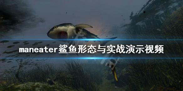《食人鲨》Maneater形态有哪些?鲨鱼形态与实战演示视频