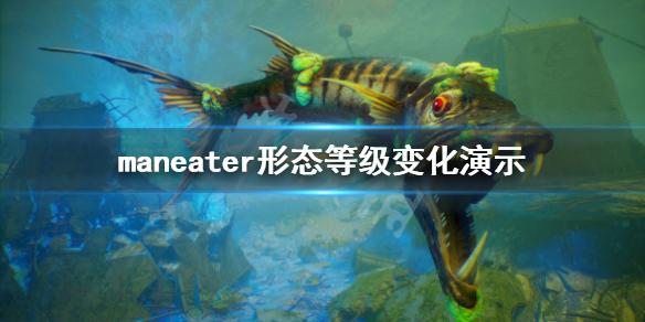 《食人鲨》形态变化有哪些?Maneater形态等级变化演示
