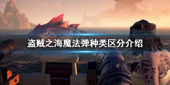 《盗贼之海》魔法弹怎么区分 魔法弹种类区分介绍