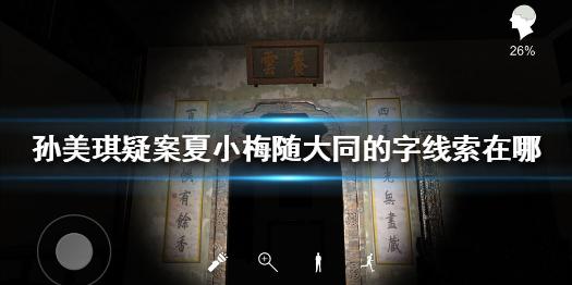 《孙美琪疑案夏小梅》随大同的字线索在哪 随大同的字线
