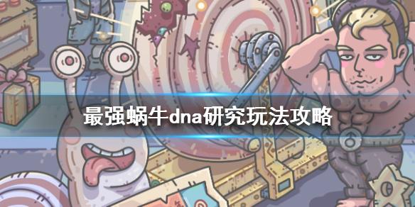 《最强蜗牛》dna研究玩法攻略