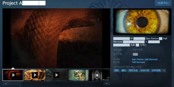 神秘恐怖新作《ProjectA██》上架Steam关键信息遭涂抹