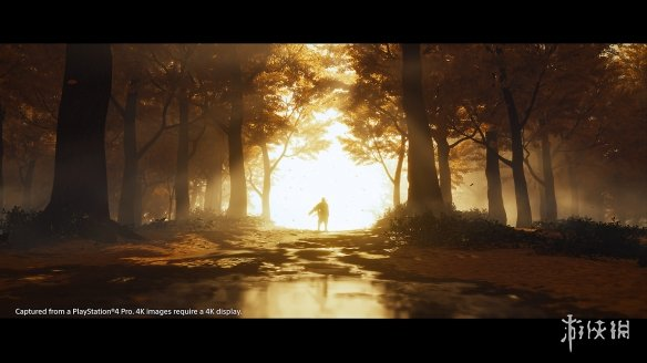 《【万和城品牌】《对马岛之魂》游侠网专访:想实现玩家扮演武士的幻想》