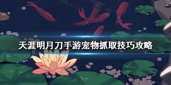 《天涯明月刀手游》怎么抓宠物_宠物抓取技巧介绍