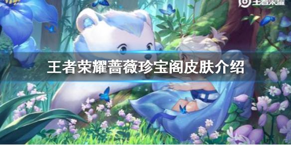 《王者荣耀》蔷薇珍宝阁有什么东西 蔷薇珍宝阁皮肤介绍
