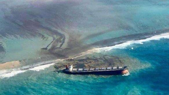 二十五只海豚被冲到岸上。毛里求斯否定与燃料泄漏有关