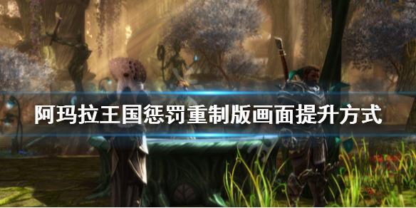 《阿玛拉王国惩罚重制版》画面怎么提升 画面提升方式