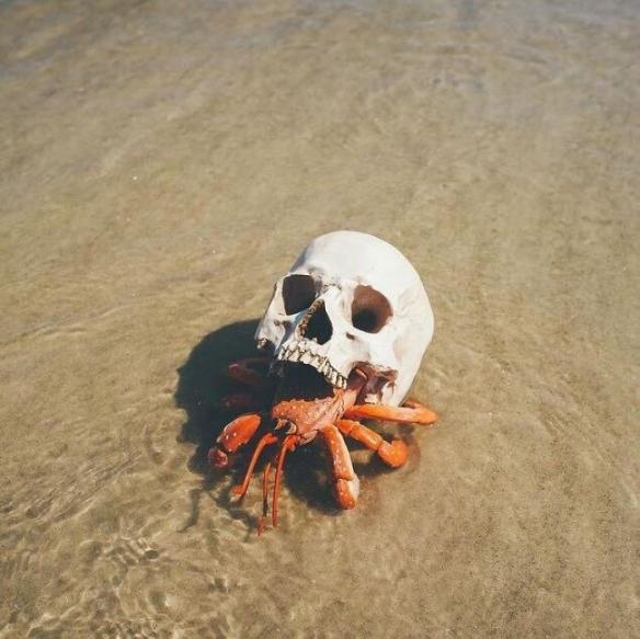 少女胸前的大蜗牛真是百看不厌!18张惊人的神奇照片