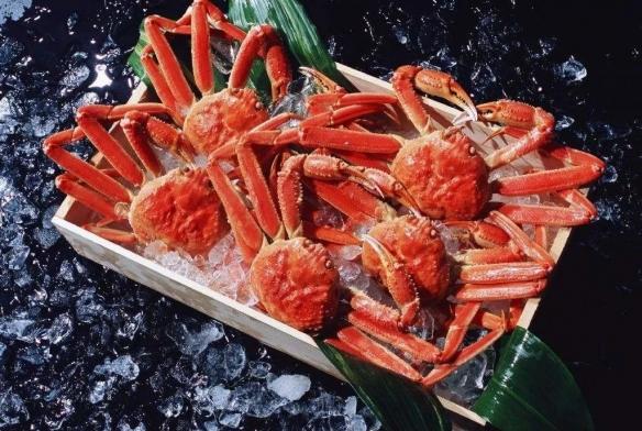 日本顶级螃蟹身价惊人!1.5公斤松叶蟹创天价:16万!
