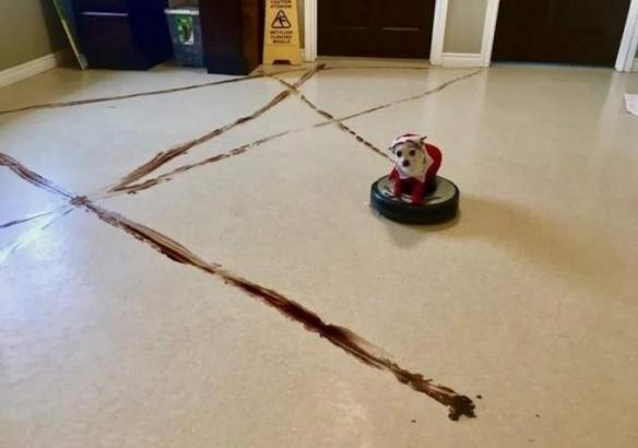 """扫地机器人的""""异状"""":网友分享各种""""暴走形态""""!"""