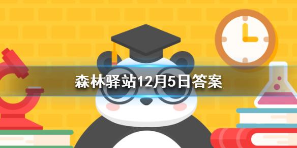 在野外生活的大熊猫妈妈一般选择在哪里生小宝宝呢 森林驿站今日答案
