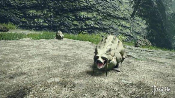 """《怪物猎人:崛起》""""狸兽""""视频介绍 能变大的""""狸猫"""""""