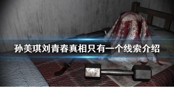 《孙美琪疑案刘青春》真相只有一个在哪 真相只