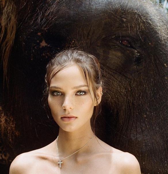 美女全果骑象惹争议?名模Alesya表示爱自然是天性!