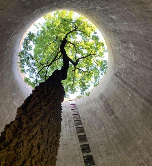 自然完胜人类文明世界!大自然VS人类的造物的战果