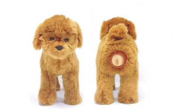 啥家庭啊,还给狗买飞机杯?日本网友发现狗用飞机杯