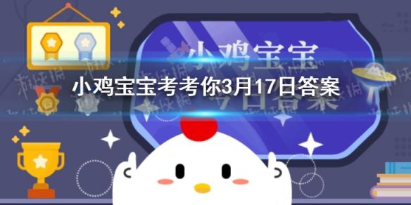 小鸡宝宝答案:小鸡宝宝考考你我国古代有秋千节这天还是什么节日