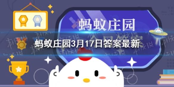 小鸡宝宝答题:秋千节这天还是什么节日