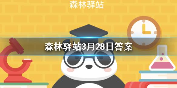 秦岭四宝分别是大熊猫金丝猴羚牛和以下哪种动