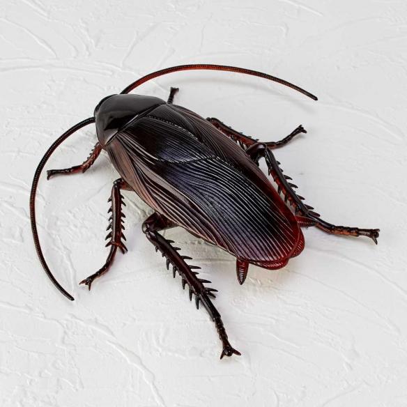 传说中南方蟑螂?!日本模型厂推出新惊异部屋扭蛋