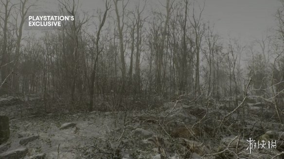 PS5第一人称生存射击游戏《遗弃》公布:陌生森林中的生存之旅