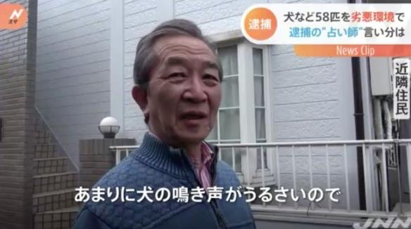 迪士尼在逃巫婆?日本一女子在公寓养58只宠物被逮捕