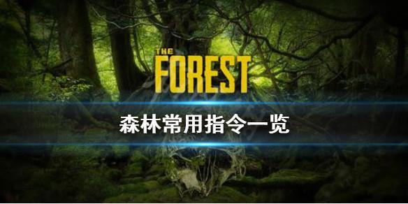 《森林》游戏常用指令有哪些 The Forest常用指令一览