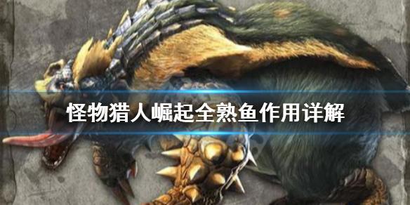 《怪物猎人崛起》全熟鱼有什么用 全熟鱼作用详解