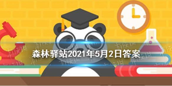 滇金丝猴,中国特有的世界级珍稀濒危动物,总