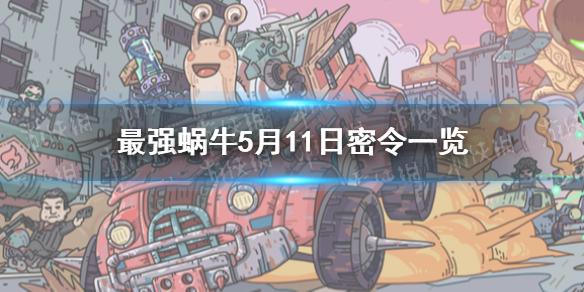 《最强蜗牛》5月11日密令是什么 5月11日密令一览