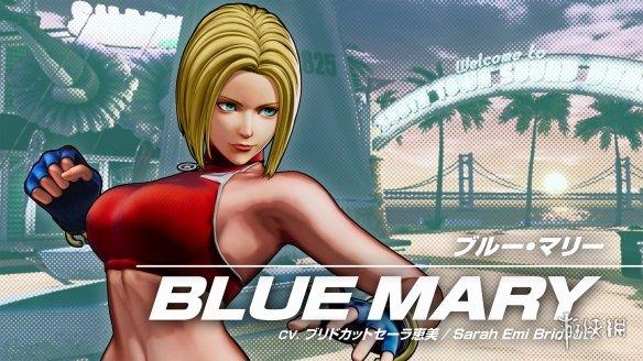 《拳皇》系列玛丽设定图公开:喜欢吃牛肉杯且擅长关节击打擒拿的短发美人!