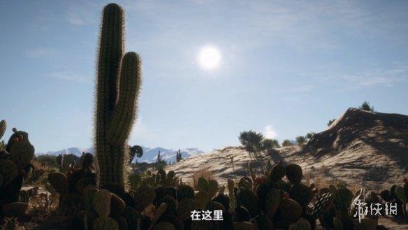 《猎人:野性的呼唤》新DLC阿罗约保护区宣传片公布 新地图新增五种物种