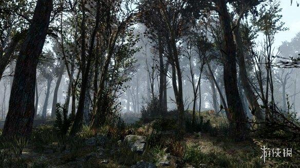 《辐射4》森林MOD追加18000棵树 需要全部DLC才能运行